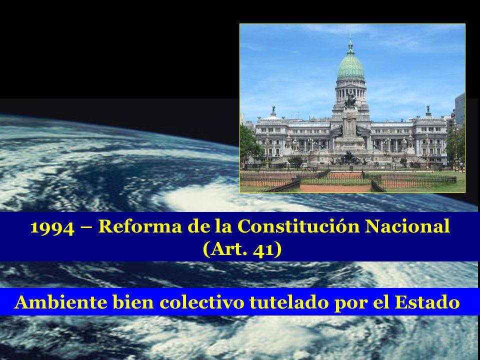 1994 – Reforma de la Constitución Nacional (Art. 41) Ambiente bien colectivo tutelado por el Estado