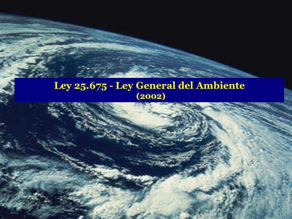 Ley 25.675 - Ley General del Ambiente (2002)
