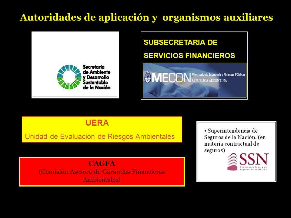 SUBSECRETARIA DE SERVICIOS FINANCIEROS CAGFA (Comisión Asesora de Garantías Financieras Ambientales) UERA Unidad de Evaluación de Riesgos Ambientales Autoridades de aplicación y organismos auxiliares