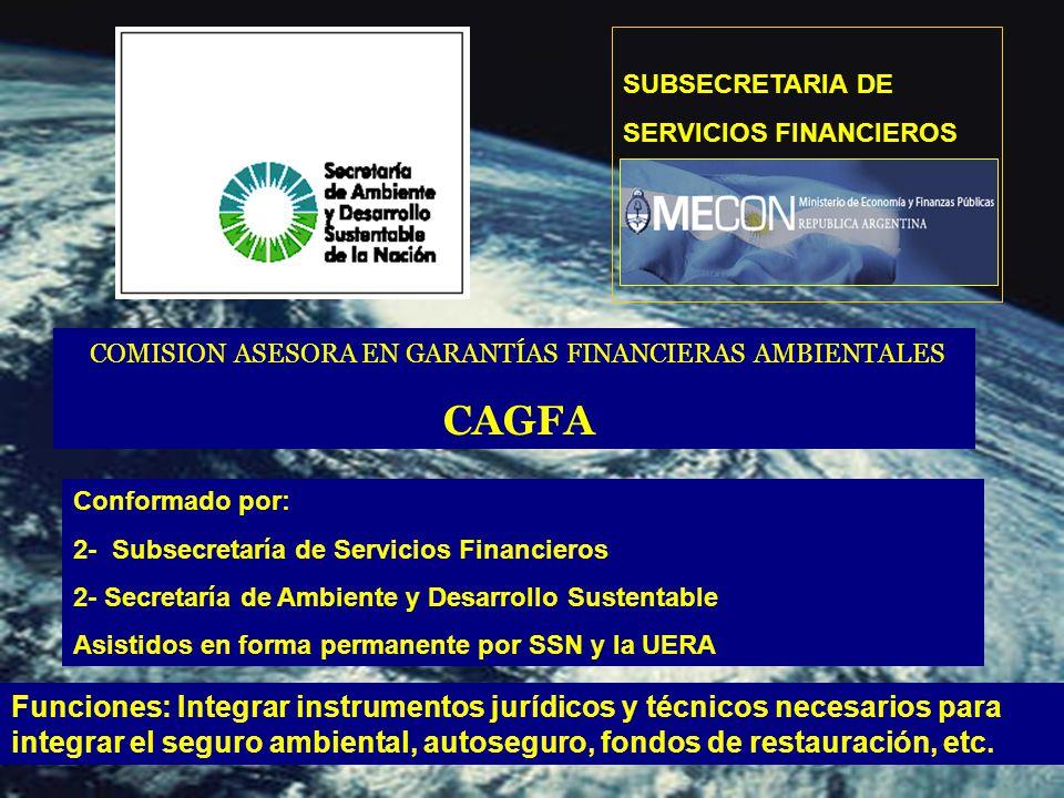 SUBSECRETARIA DE SERVICIOS FINANCIEROS COMISION ASESORA EN GARANTÍAS FINANCIERAS AMBIENTALES CAGFA Funciones: Integrar instrumentos jurídicos y técnicos necesarios para integrar el seguro ambiental, autoseguro, fondos de restauración, etc.
