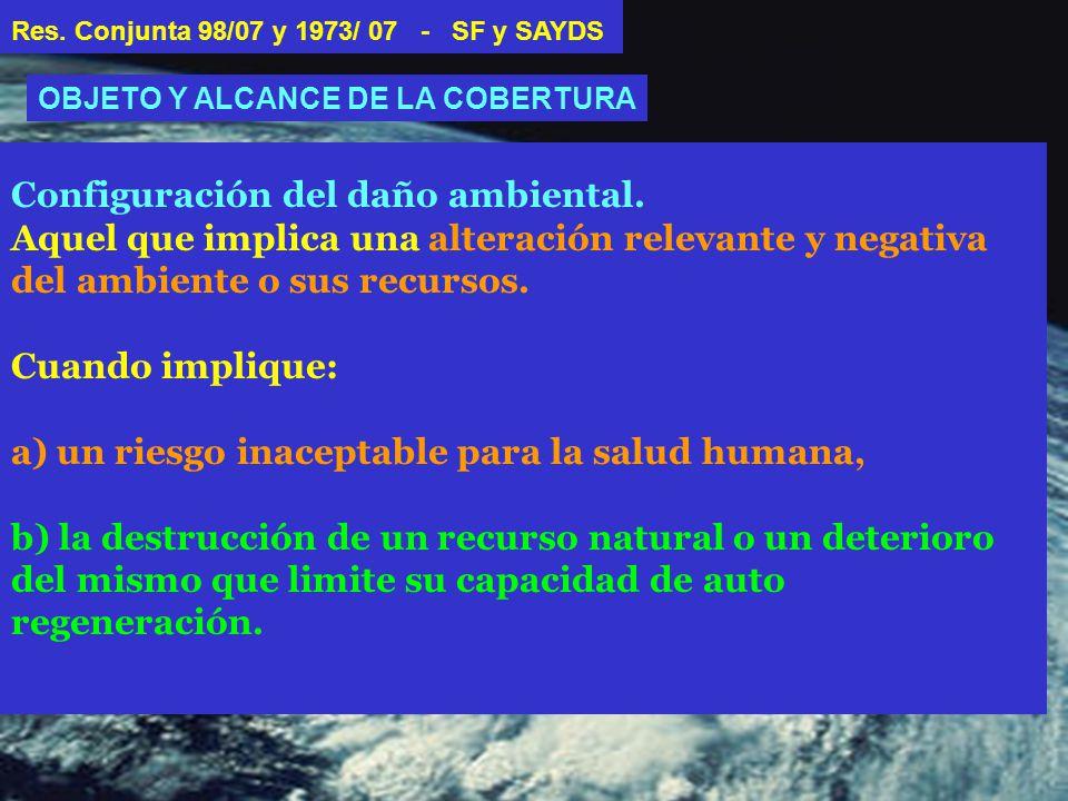 Configuración del daño ambiental.