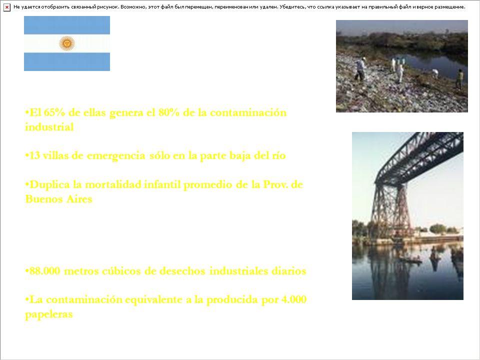 3.000 fábricas instaladas en 64 kilómetros de recorrido El 65% de ellas genera el 80% de la contaminación industrial 5 millones de personas (15% de la población argentina) 13 villas de emergencia sólo en la parte baja del río Más de 100 basurales ilegales en sus márgenes Duplica la mortalidad infantil promedio de la Prov.
