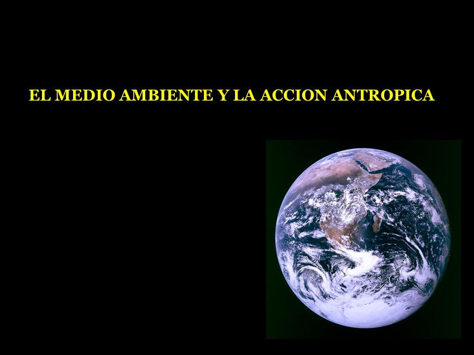 EL MEDIO AMBIENTE Y LA ACCION ANTROPICA