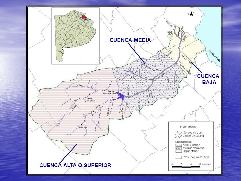 CUENCA ALTA O SUPERIOR CUENCA MEDIA CUENCA BAJA