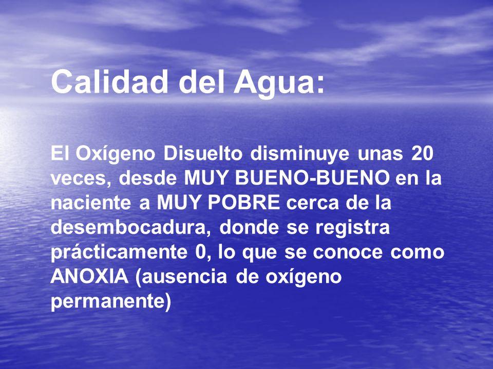Calidad del Agua: El Oxígeno Disuelto disminuye unas 20 veces, desde MUY BUENO-BUENO en la naciente a MUY POBRE cerca de la desembocadura, donde se registra prácticamente 0, lo que se conoce como ANOXIA (ausencia de oxígeno permanente)