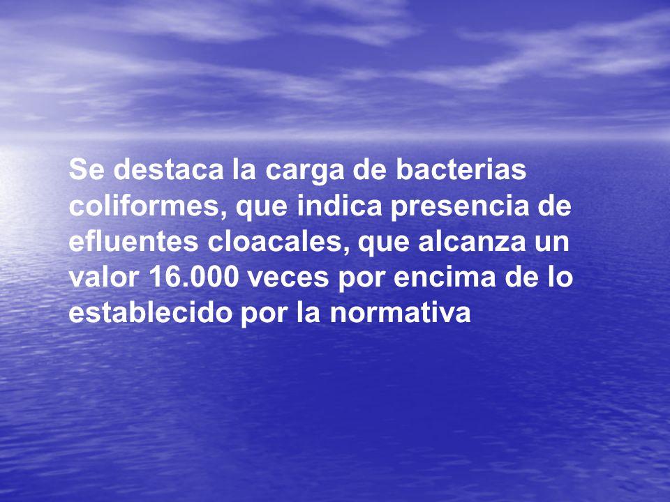 Se destaca la carga de bacterias coliformes, que indica presencia de efluentes cloacales, que alcanza un valor 16.000 veces por encima de lo establecido por la normativa