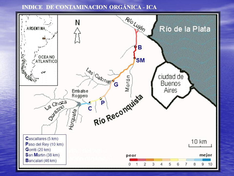 Indice de calidad del agua (por contaminación orgánica) C ascallares (5 km) P aso del Rey (10 km) G orriti (20 km) S an M artin (38 km) B ancalari (46 km) C P G SM B INDICE DE CONTAMINACION ORGÁNICA - ICA