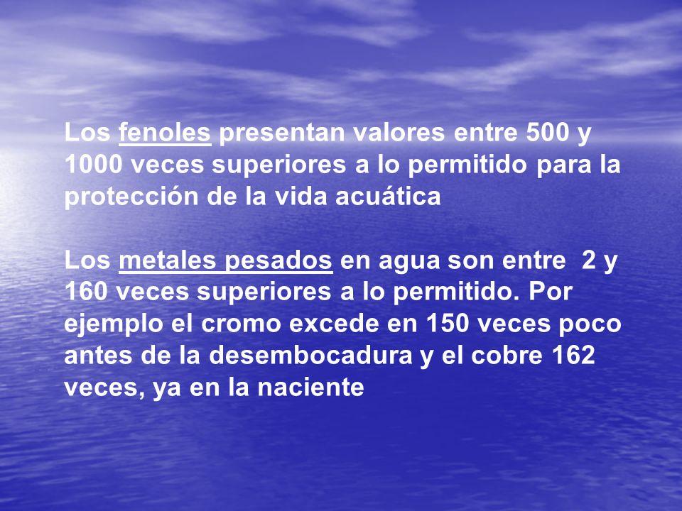 Los fenoles presentan valores entre 500 y 1000 veces superiores a lo permitido para la protección de la vida acuática Los metales pesados en agua son entre 2 y 160 veces superiores a lo permitido.