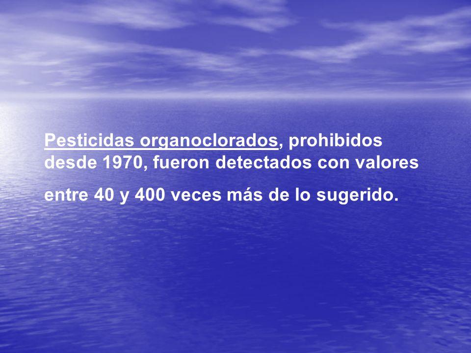 Pesticidas organoclorados, prohibidos desde 1970, fueron detectados con valores entre 40 y 400 veces más de lo sugerido.