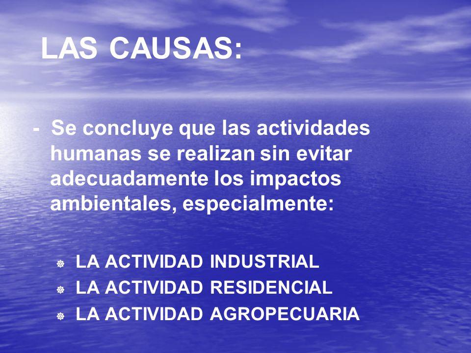 LAS CAUSAS: - Se concluye que las actividades humanas se realizan sin evitar adecuadamente los impactos ambientales, especialmente:   LA ACTIVIDAD INDUSTRIAL   LA ACTIVIDAD RESIDENCIAL   LA ACTIVIDAD AGROPECUARIA