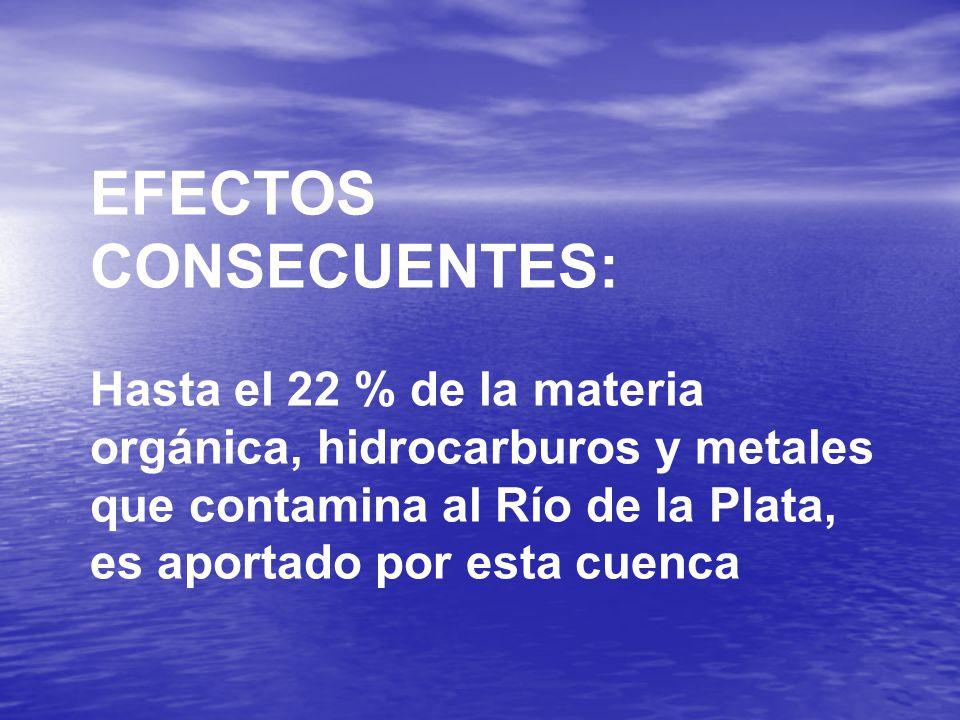 EFECTOS CONSECUENTES: Hasta el 22 % de la materia orgánica, hidrocarburos y metales que contamina al Río de la Plata, es aportado por esta cuenca