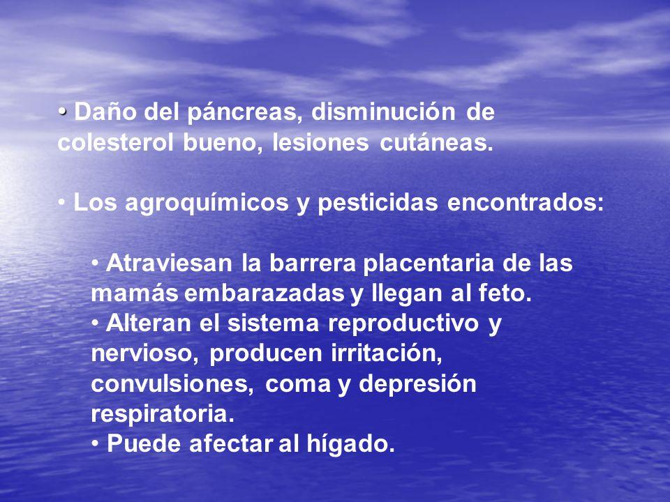 Daño del páncreas, disminución de colesterol bueno, lesiones cutáneas.