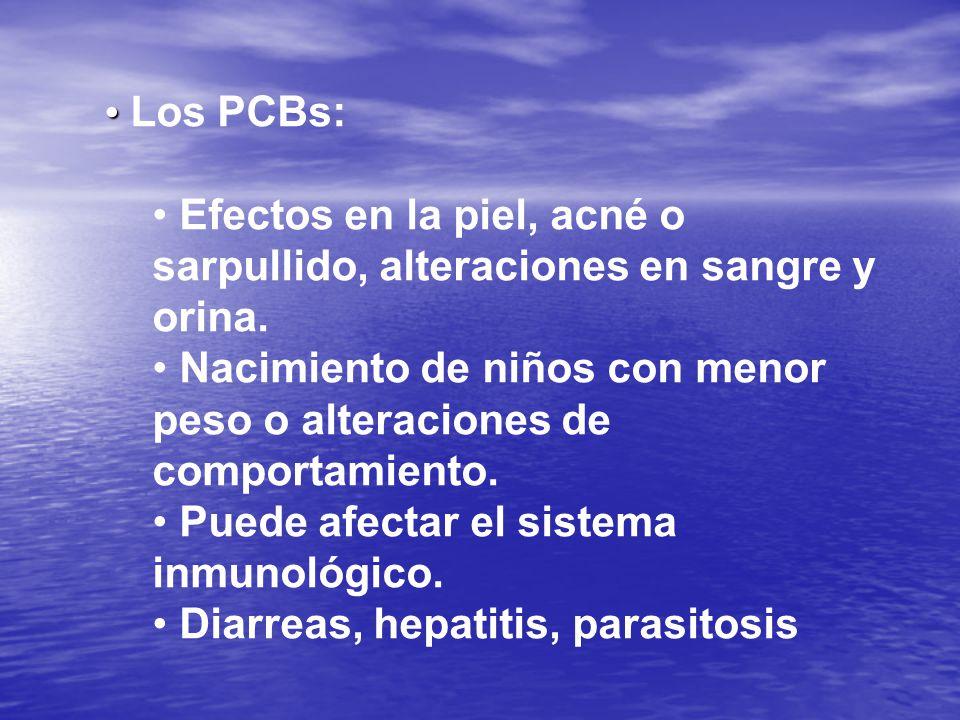 Los PCBs: Efectos en la piel, acné o sarpullido, alteraciones en sangre y orina.