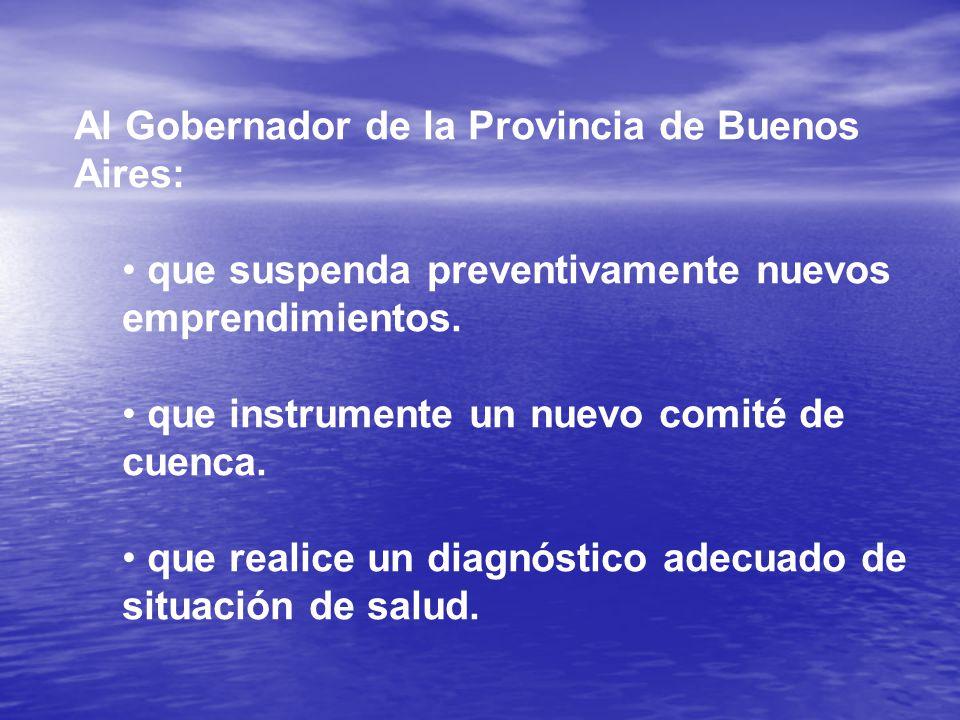 Al Gobernador de la Provincia de Buenos Aires: que suspenda preventivamente nuevos emprendimientos.
