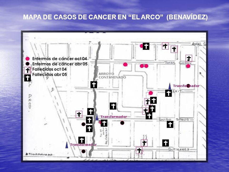 MAPA DE CASOS DE CANCER EN EL ARCO (BENAVÍDEZ)