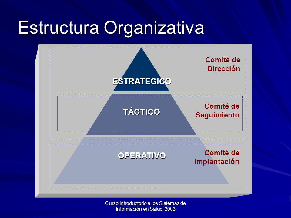Curso Introductorio a los Sistemas de Información en Salud, 2003 Estructura Organizativa ESTRATEGICO TÁCTICO OPERATIVO Comité de Seguimiento Comité de Dirección Comité de Implantación