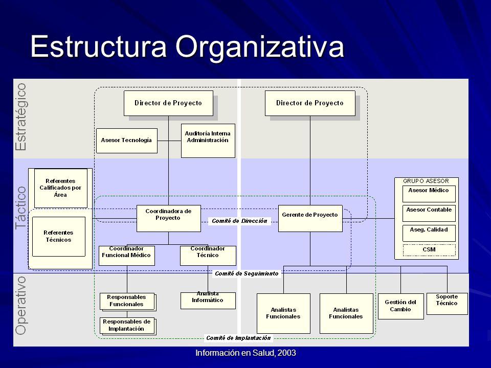Curso Introductorio a los Sistemas de Información en Salud, 2003 Estructura Organizativa