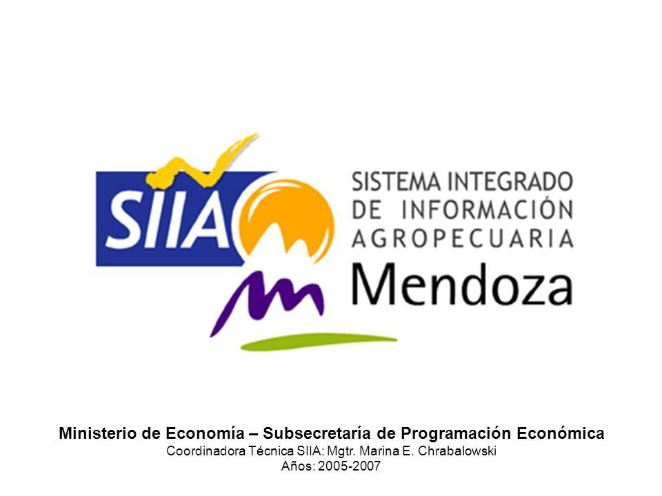 Ministerio de Economía – Subsecretaría de Programación Económica Coordinadora Técnica SIIA: Mgtr.
