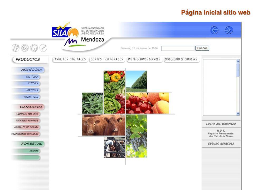 Página inicial sitio web