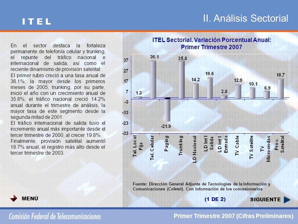 II. Análisis Sectorial SIGUIENTE ITEL Sectorial.