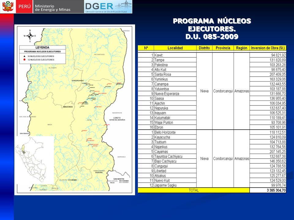 PROGRAMA NÚCLEOS EJECUTORES. D.U. 085-2009