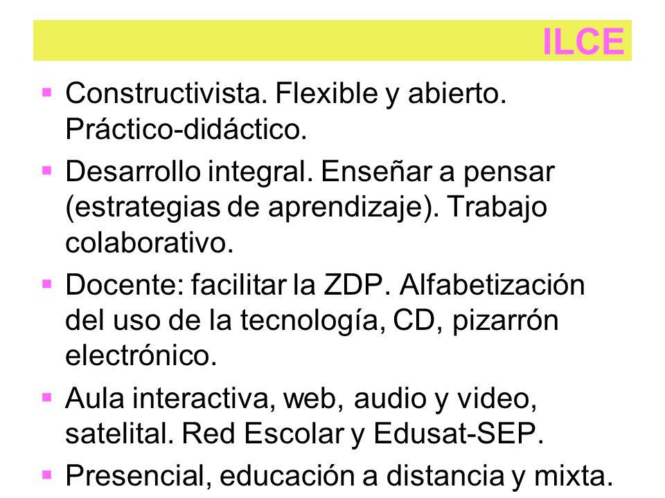  Constructivista. Flexible y abierto. Práctico-didáctico.