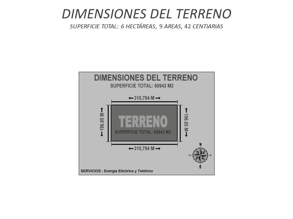 DIMENSIONES DEL TERRENO SUPERFICIE TOTAL: 6 HECTÁREAS, 9 AREAS, 42 CENTIARIAS