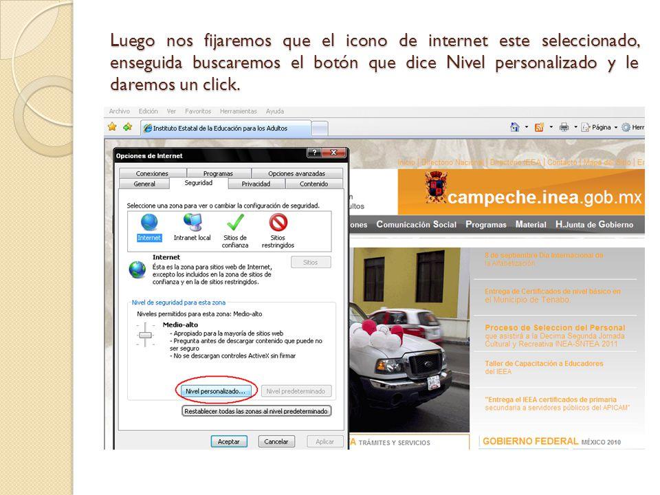 Luego nos fijaremos que el icono de internet este seleccionado, enseguida buscaremos el botón que dice Nivel personalizado y le daremos un click.