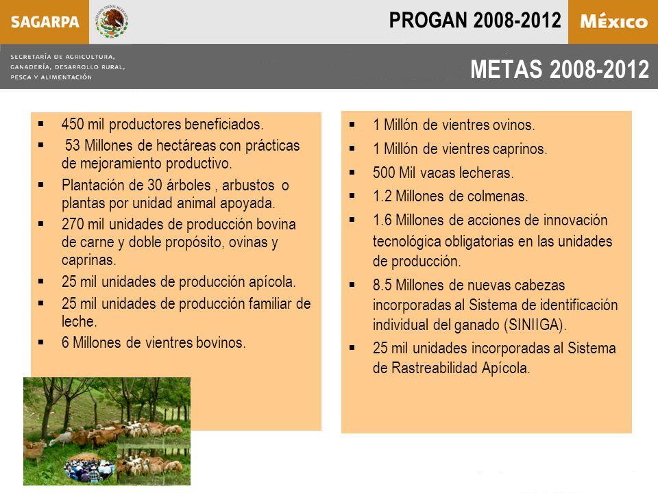 METAS 2008-2012  1 Millón de vientres ovinos.  1 Millón de vientres caprinos.