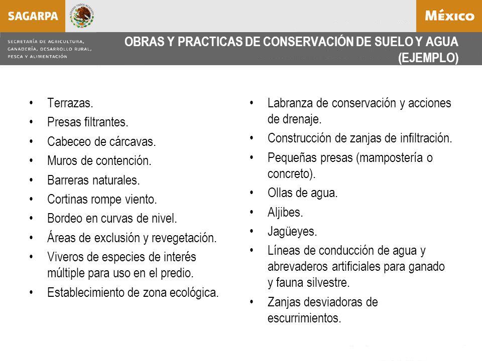 OBRAS Y PRACTICAS DE CONSERVACIÓN DE SUELO Y AGUA (EJEMPLO) Terrazas.