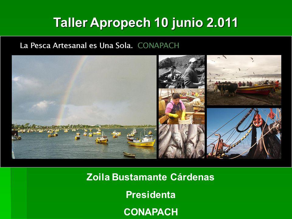 Zoila Bustamante Cárdenas Presidenta CONAPACH Taller Apropech 10 junio 2.011