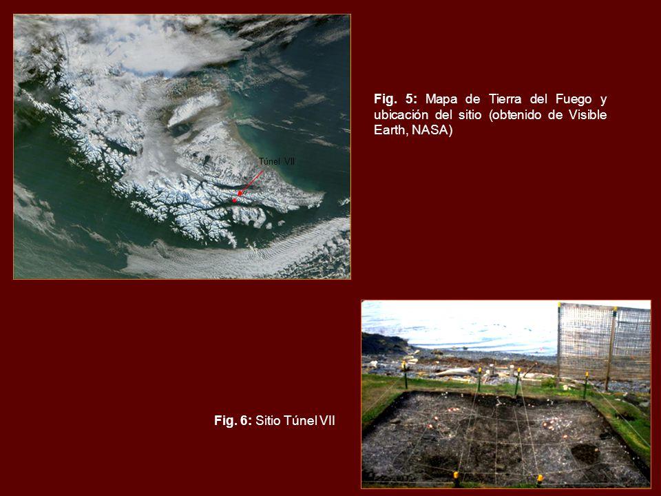 Fig. 5: Mapa de Tierra del Fuego y ubicación del sitio (obtenido de Visible Earth, NASA) Fig.