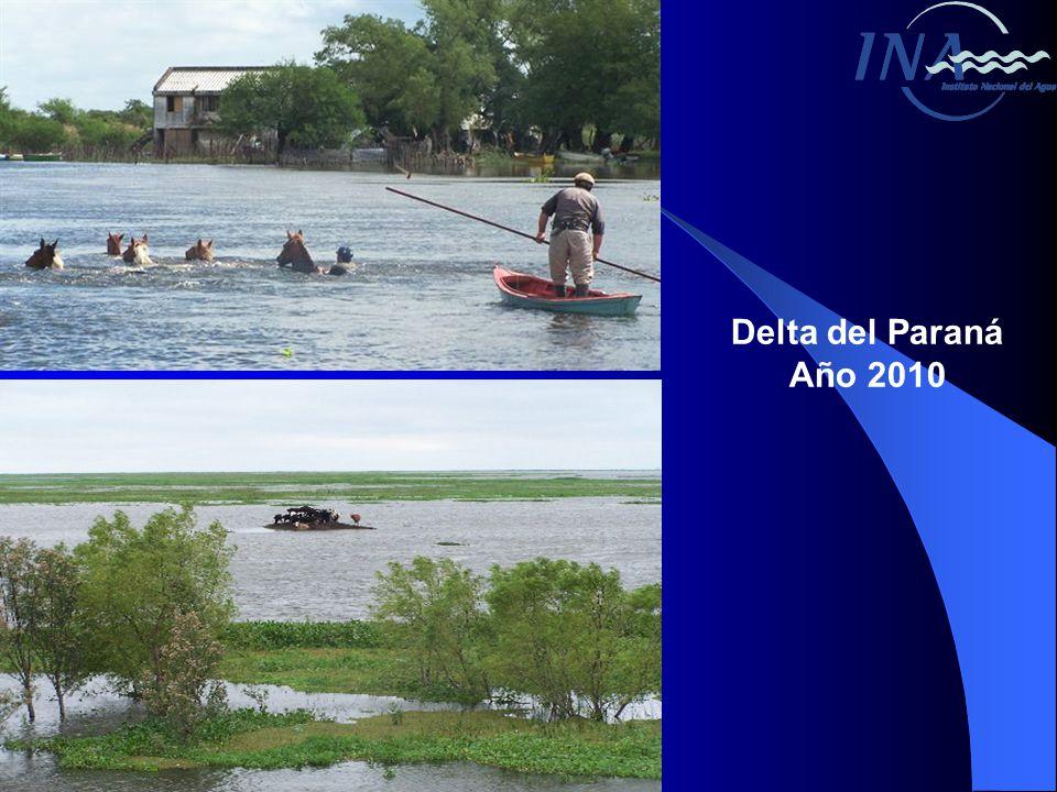 Delta del Paraná Año 2010