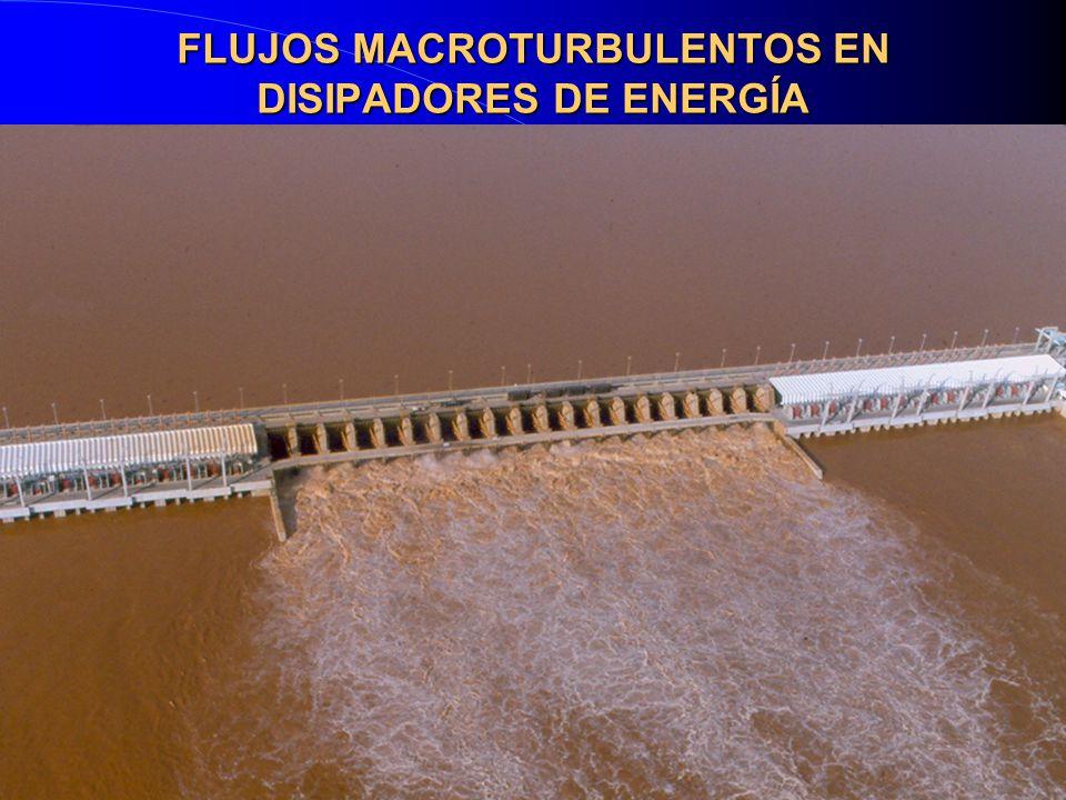 FLUJOS MACROTURBULENTOS EN DISIPADORES DE ENERGÍA