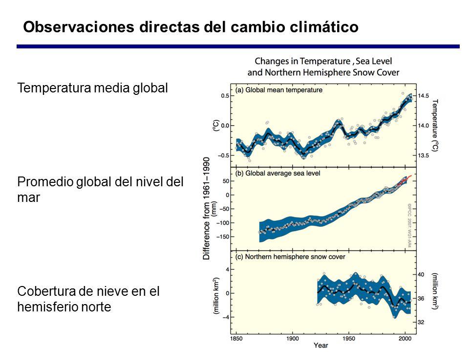 Observaciones directas del cambio climático Temperatura media global Promedio global del nivel del mar Cobertura de nieve en el hemisferio norte