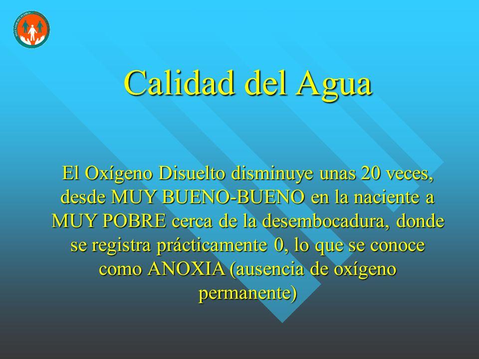 Calidad del Agua El Oxígeno Disuelto disminuye unas 20 veces, desde MUY BUENO-BUENO en la naciente a MUY POBRE cerca de la desembocadura, donde se registra prácticamente 0, lo que se conoce como ANOXIA (ausencia de oxígeno permanente)
