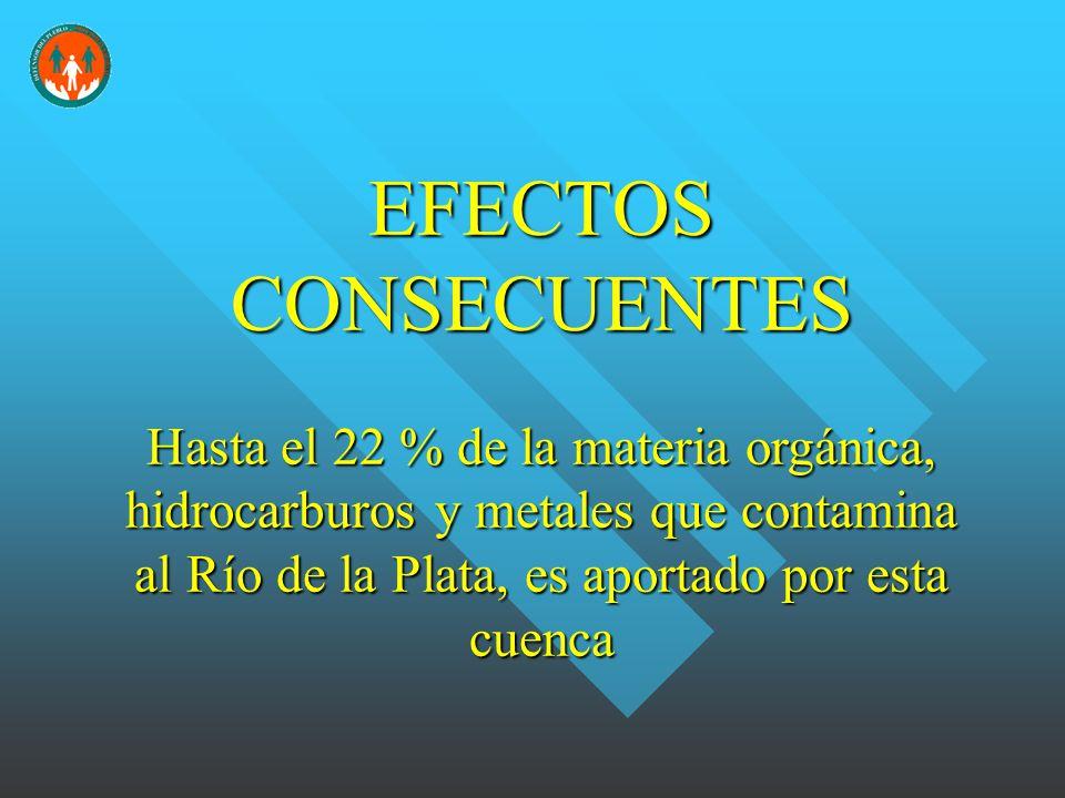 EFECTOS CONSECUENTES Hasta el 22 % de la materia orgánica, hidrocarburos y metales que contamina al Río de la Plata, es aportado por esta cuenca