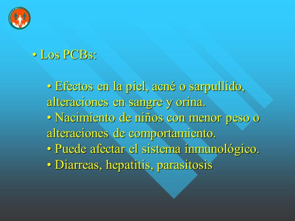 Los PCBs: Los PCBs: Efectos en la piel, acné o sarpullido, alteraciones en sangre y orina.