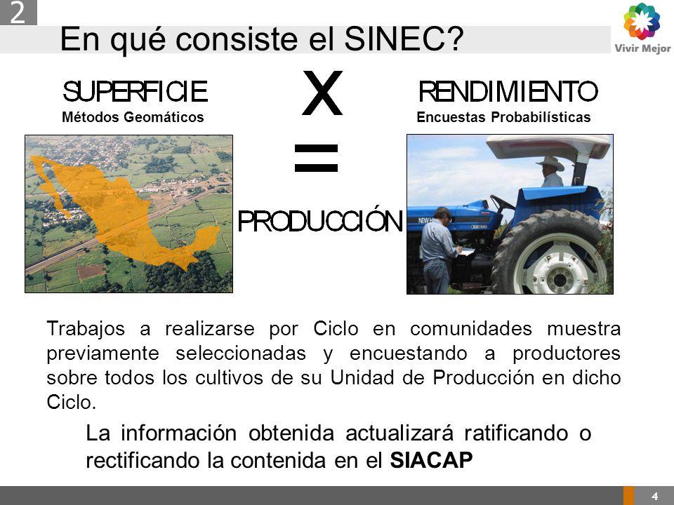 En qué consiste el SINEC.