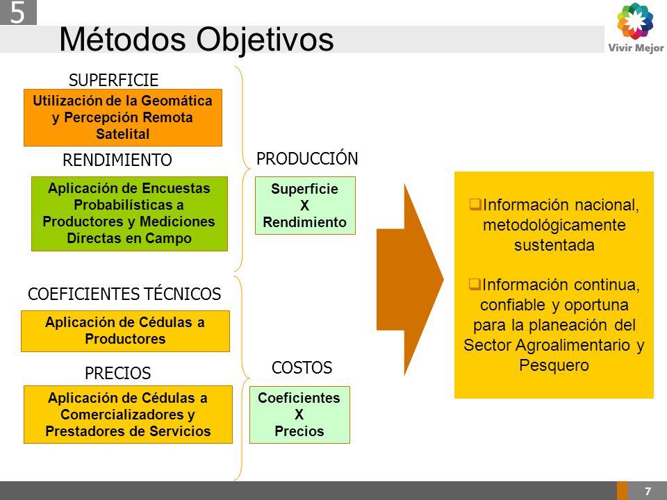7 Métodos Objetivos 5  Información nacional, metodológicamente sustentada  Información continua, confiable y oportuna para la planeación del Sector Agroalimentario y Pesquero Utilización de la Geomática y Percepción Remota Satelital SUPERFICIE Aplicación de Encuestas Probabilísticas a Productores y Mediciones Directas en Campo RENDIMIENTO Aplicación de Cédulas a Productores COEFICIENTES TÉCNICOS Superficie X Rendimiento PRODUCCIÓN Aplicación de Cédulas a Comercializadores y Prestadores de Servicios PRECIOS Coeficientes X Precios COSTOS