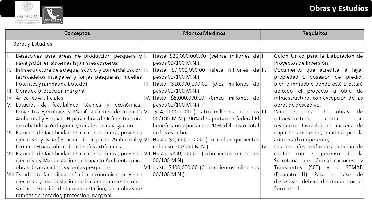 Obras y Estudios ConceptosMontos MáximosRequisitos Obras y Estudios.