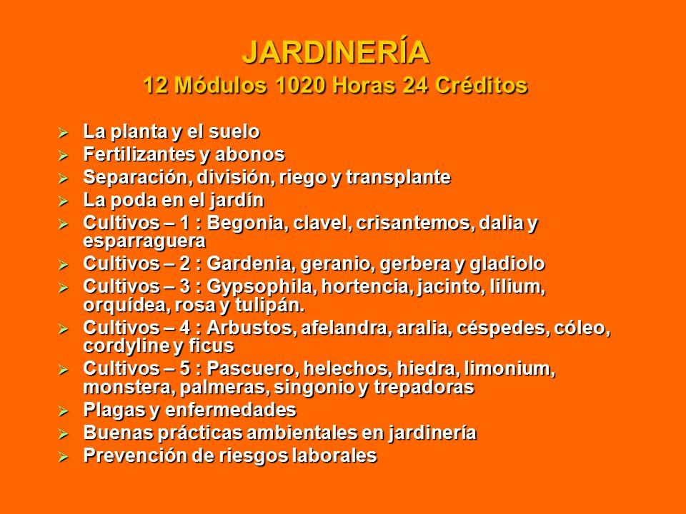 JARDINERÍA 12 Módulos 1020 Horas 24 Créditos  La planta y el suelo  Fertilizantes y abonos  Separación, división, riego y transplante  La poda en el jardín  Cultivos – 1 : Begonia, clavel, crisantemos, dalia y esparraguera  Cultivos – 2 : Gardenia, geranio, gerbera y gladiolo  Cultivos – 3 : Gypsophila, hortencia, jacinto, lilium, orquídea, rosa y tulipán.