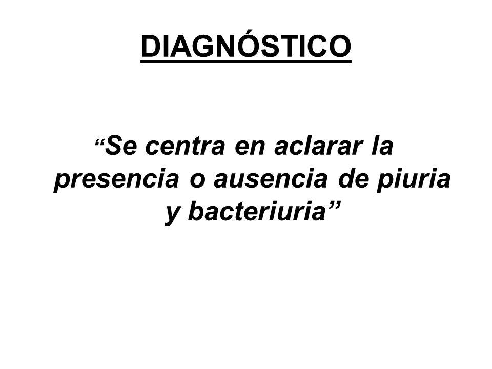 """DIAGNÓSTICO """" Se centra en aclarar la presencia o ausencia de piuria y bacteriuria"""""""