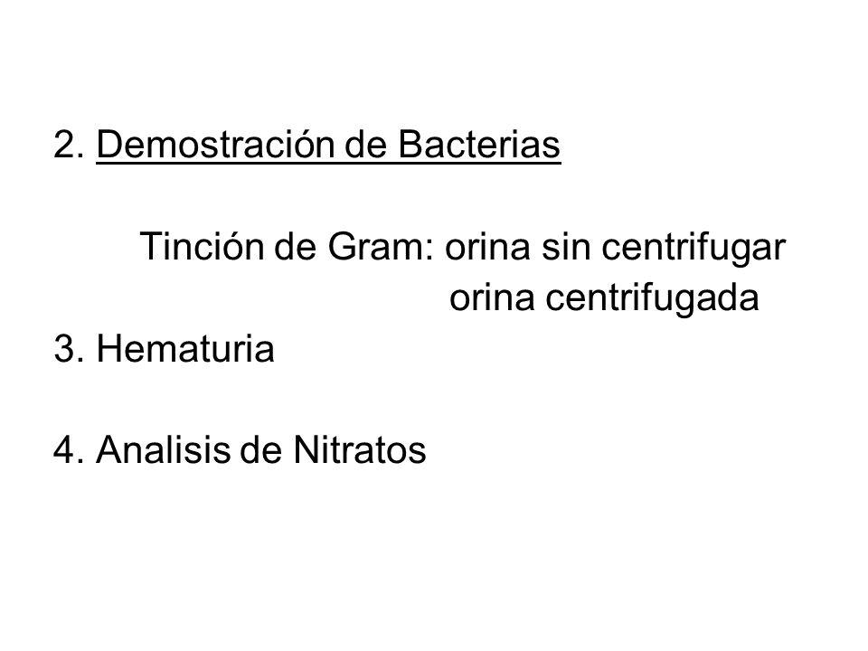 2. Demostración de Bacterias Tinción de Gram: orina sin centrifugar orina centrifugada 3. Hematuria 4. Analisis de Nitratos