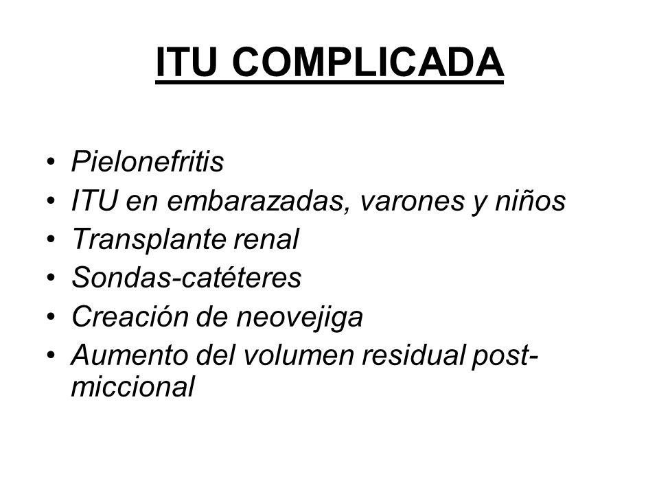 ITU COMPLICADA Pielonefritis ITU en embarazadas, varones y niños Transplante renal Sondas-catéteres Creación de neovejiga Aumento del volumen residual