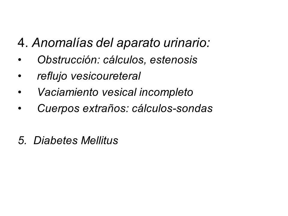 4. Anomalías del aparato urinario: Obstrucción: cálculos, estenosis reflujo vesicoureteral Vaciamiento vesical incompleto Cuerpos extraños: cálculos-s