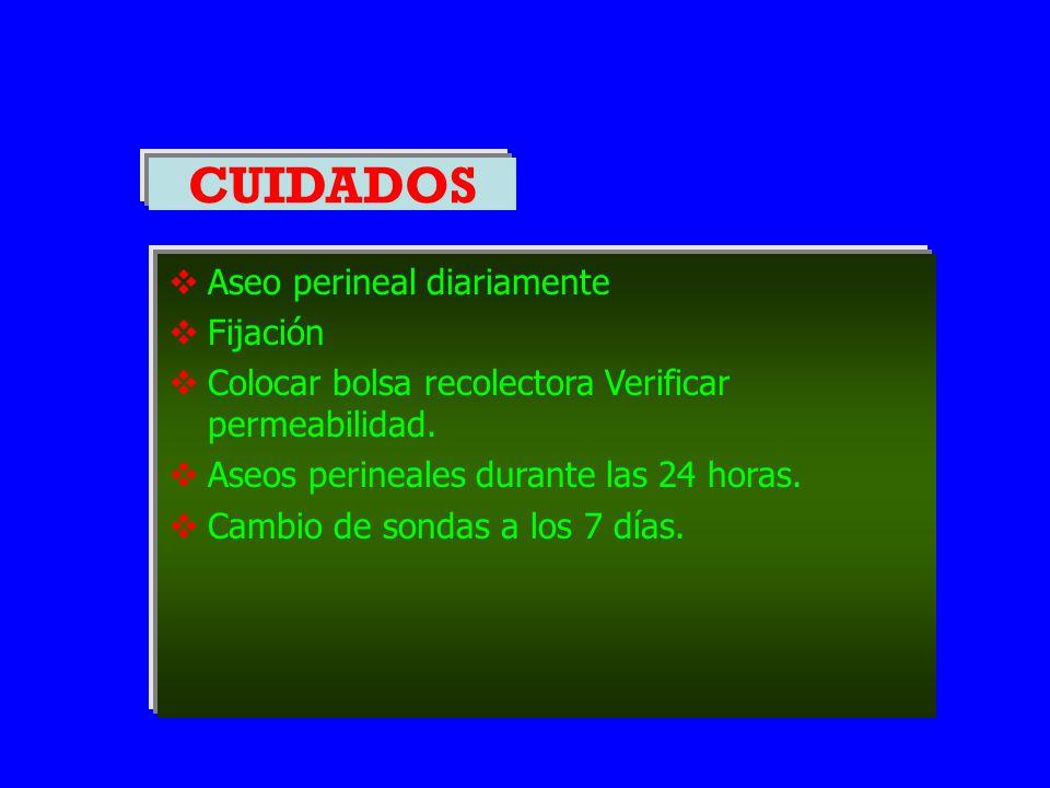 CUIDADOS  Aseo perineal diariamente  Fijación  Colocar bolsa recolectora Verificar permeabilidad.  Aseos perineales durante las 24 horas.  Cambio