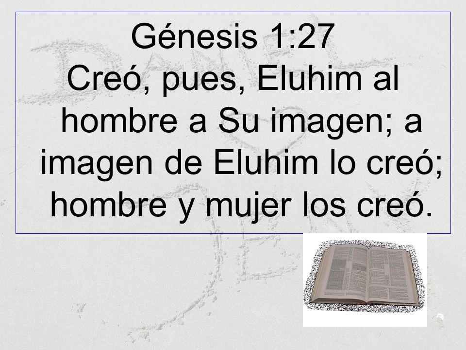 Génesis 1:27 Creó, pues, Eluhim al hombre a Su imagen; a imagen de Eluhim lo creó; hombre y mujer los creó.
