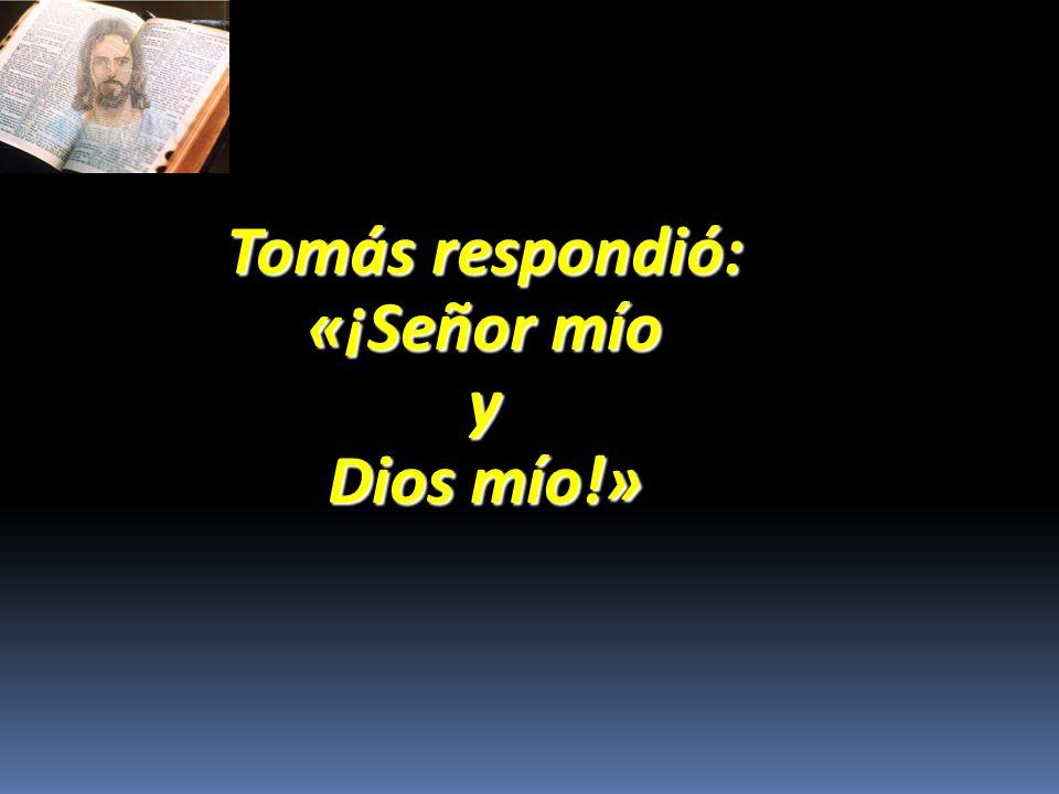 En adelante no seas incrédulo, sino hombre de fe.»
