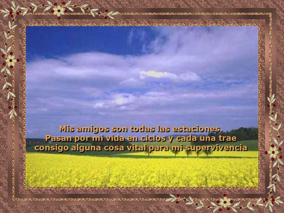 Traducido del portugués Por J.Sanchez
